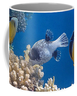The Red Sea Underwater World Coffee Mug