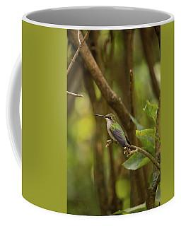 At Rest Coffee Mug