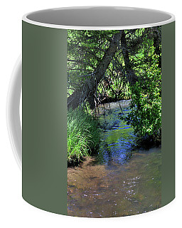 Coffee Mug featuring the photograph The Rio Chiquito by Ron Cline
