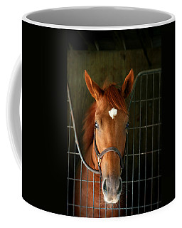 The Roan Coffee Mug
