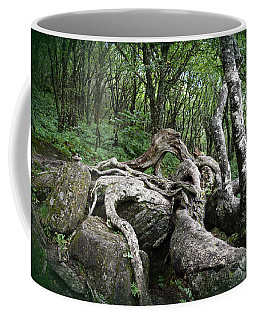 The Root Coffee Mug