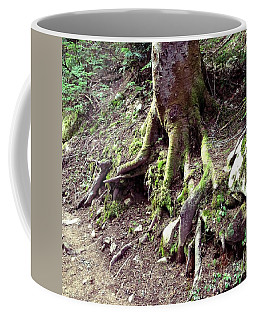 The Root Of The Matter Coffee Mug