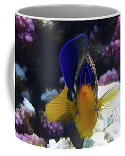 The Royal Angelfish Coffee Mug