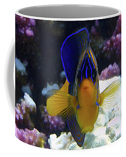 The Royal Angelfish Coffee Mug