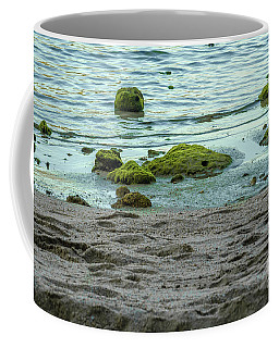 Coffee Mug featuring the photograph The Seashore by Michelle Meenawong