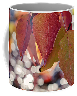 Coffee Mug featuring the photograph The Season Of The Fall Begins by Linda Lees