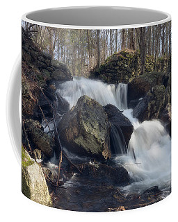 The Secret Waterfall 1 Coffee Mug