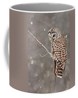 The Silent Hunter Coffee Mug
