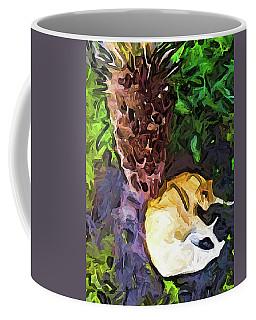 The Sleeping Cat And The Dead Tree Fern Coffee Mug