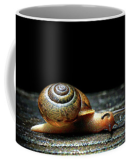 Coffee Mug featuring the photograph The Small Things by Jessica Brawley