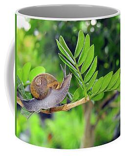 The Snail Coffee Mug
