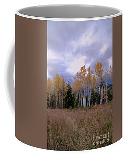The  Song Of The Aspens 2 Coffee Mug