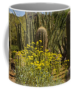 The Song Of The Sonoran Desert Coffee Mug