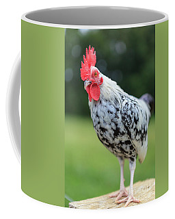 The Speckled Chicken Coffee Mug