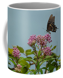 Coffee Mug featuring the photograph The Spicebush Swallowtail Of Prettyboy Reservoir by Donald C Morgan