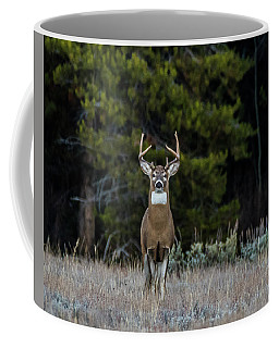 Coffee Mug featuring the photograph The Stag From The Forest by Yeates Photography