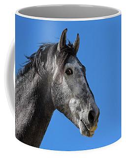 The Stallion Coffee Mug