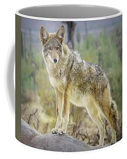 The Stance Coffee Mug