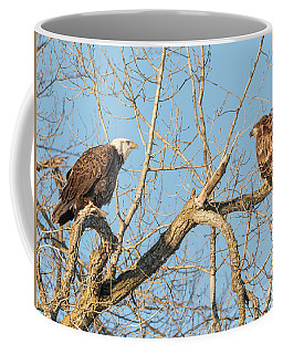 Coffee Mug featuring the photograph The Stare Down 2017-1 by Thomas Young