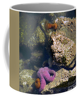 The Starfish Coffee Mug