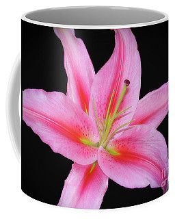 Coffee Mug featuring the photograph The Stargazer by Sue Melvin