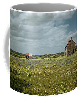 Coffee Mug featuring the photograph The Stone House by Linda Unger