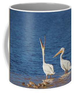 Coffee Mug featuring the photograph The Stretch by Kim Hojnacki
