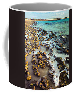 The Stromatolite Family Enjoying Its 1277500000000th Sunset Coffee Mug