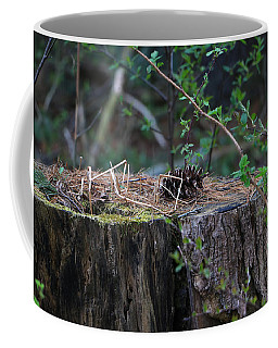 Coffee Mug featuring the photograph The Stump by Rick Morgan