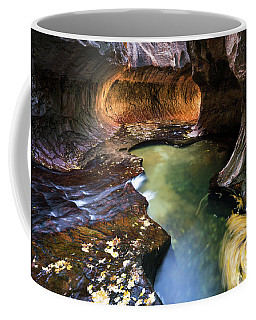 The Subway In Zion 2017-1 Coffee Mug