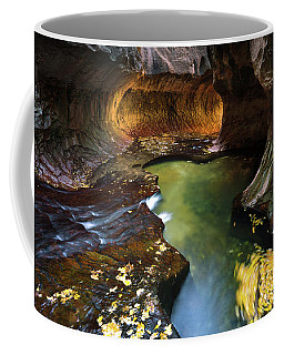The Subway In Zion 2017-2 Coffee Mug