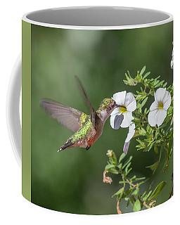The Sweet Hummingbird Coffee Mug