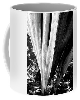 Coffee Mug featuring the photograph The Swoop Of Fallen Wood by Lorraine Devon Wilke