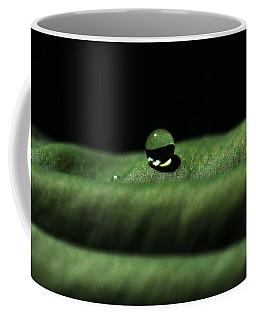 The Tao Of Raindrop Coffee Mug