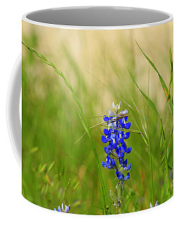 Coffee Mug featuring the photograph The Texas Bluebonnet by Kathy White