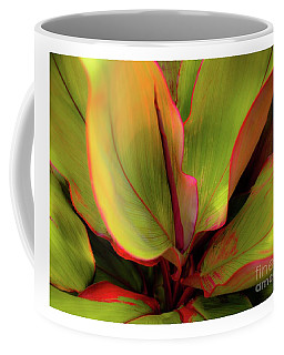 Coffee Mug featuring the photograph The Ti Leaf Plant In Hawaii by D Davila