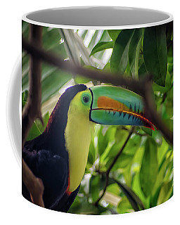 The Toucan Coffee Mug