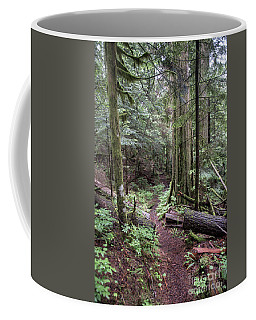 the Trail Coffee Mug