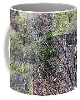 The Transition - Coffee Mug