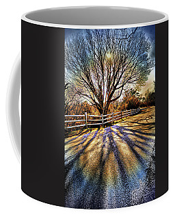 Coffee Mug featuring the photograph The Tree And The Shadow 2 by Lilia D