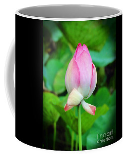Coffee Mug featuring the photograph The Unfurling by Sue Melvin