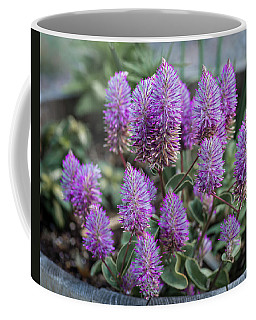 The Upward Trend Of Purple Coffee Mug