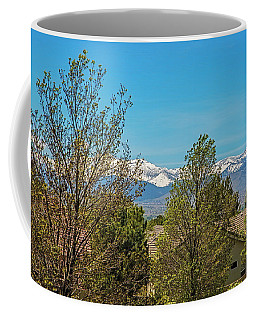 The View In Early Spring Coffee Mug by Nancy Marie Ricketts