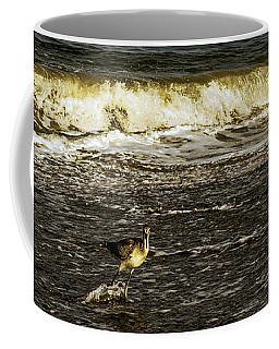 The Wading Willet  Coffee Mug