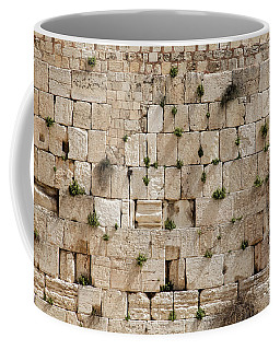 The Wailing Wall With Vegetation Coffee Mug