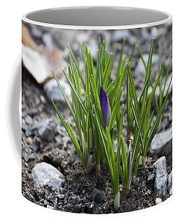 Coffee Mug featuring the photograph The Wait by Jeff Severson