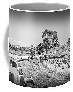 The Walk Through The Grape Vines Coffee Mug