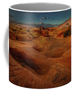 The Wash Of Subtle Shapes And Colors Coffee Mug