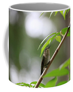 Coffee Mug featuring the photograph The Watcher by Rick Morgan