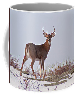 The Watchful Deer Coffee Mug